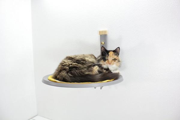 140217catbed01 600x400 - 猫が空中に浮いて見える、デザイン猫ベッド