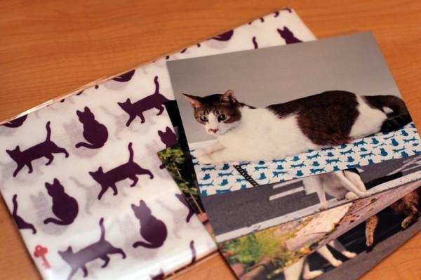 140313scannetSECURITY 600x399 - 猫の名誉編集長「りく」、ノベルティとして活躍の幅を広げる
