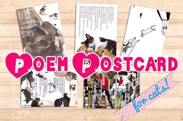 140514poempostcard 600x398 - 地域猫保護活動へ売上を寄付する、猫ポエム絵はがきプロジェクト