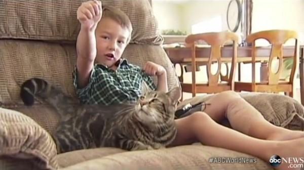 140516tara 600x336 - 勇敢なメス猫「タラ」、強烈なタックルで4歳の少年を救出
