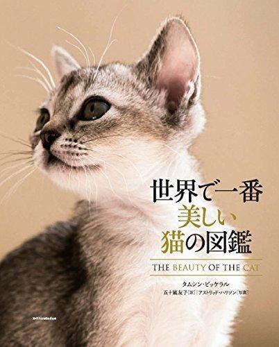 140803cat00 - 『世界で一番美しい猫の図鑑』の写真展が7/27〜開催。舶来猫ベッドの展示販売も