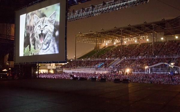 140810ict2014 600x373 - 毎年恒例のインターネット猫動画フェス、今年は8月14日に開催