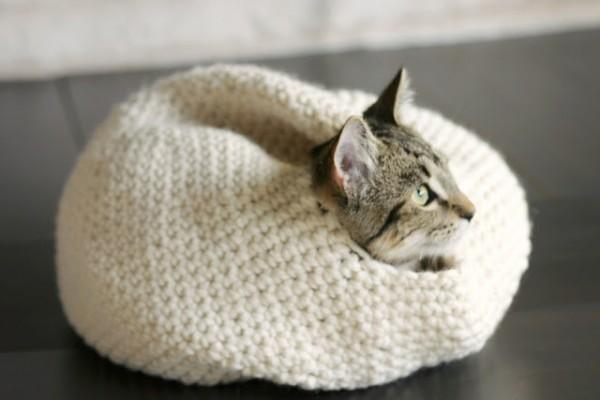 140822catbed02 600x400 - 手編みの猫ベッドに包まれる猫、目を真ん丸にして外を眺める