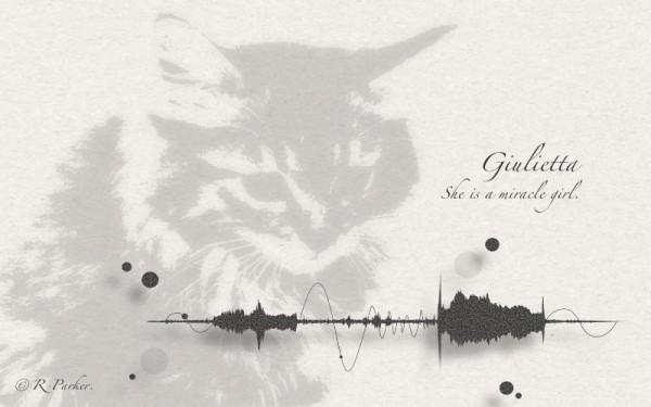 141016RParkercat 600x375 - 忘れたくない猫の鳴き声を形で残せる、メモリアムアイテム