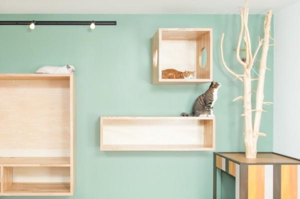141108chaussette03 600x399 - 猫との暮らしを追求したリノベ物件、絶賛入居者募集中