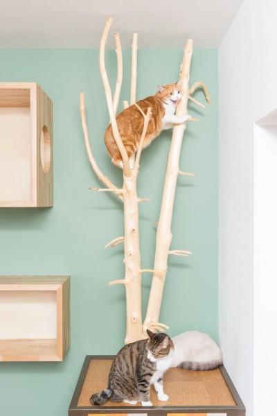 141108chaussette12 400x600 - 猫との暮らしを追求したリノベ物件、絶賛入居者募集中