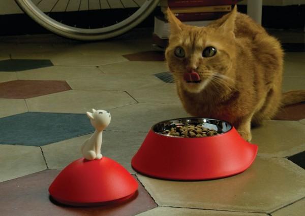 141222mio01 600x426 - 真っ赤なお皿で食事する猫、舌を出してご満悦顔
