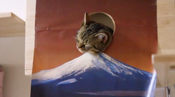 141230fujicat 600x335 - 新年にふさわしい猫、初日の出っぽく富士山の上へ出る