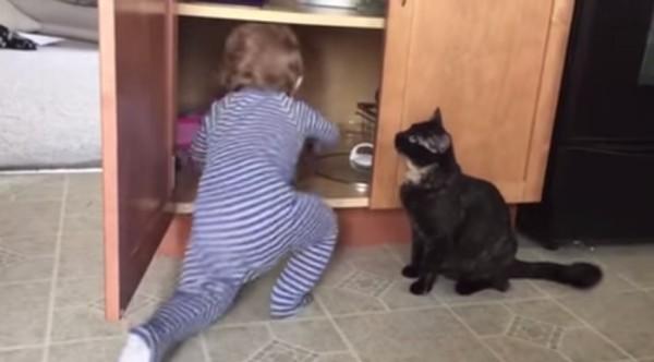 150604kamikakushi 600x332 - 器用な黒猫による神隠し事案が観測。隠された子はほぼ自力で脱出