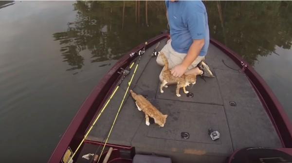 150903catfishing 600x335 - ボートで釣りに来た男、今日の釣果は猫2匹