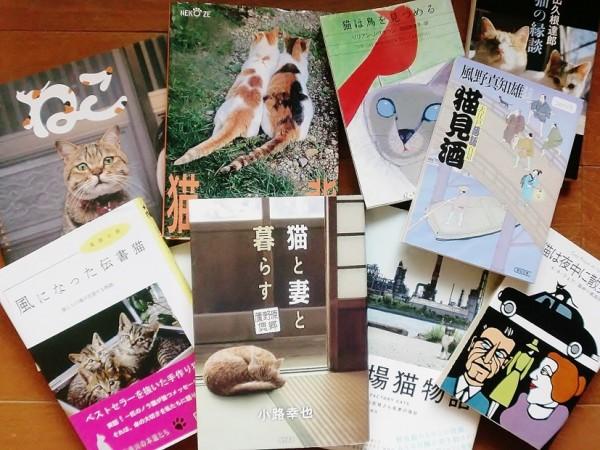 151003kjneko02 600x450 - 駅前が猫にまみれる「吉祥寺ねこ祭り2015」、映画に古本に猫ヘッドも