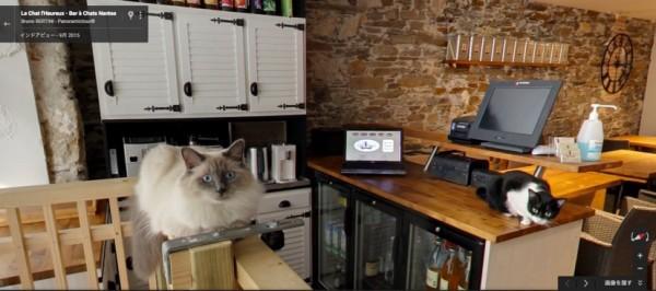 151123catcafe indoorview 600x266 - フランスのナントの猫カフェ、Google Mapsインドアビューにて店内散歩