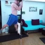 ポールダンスを体得した猫、くるりくるりと三回転
