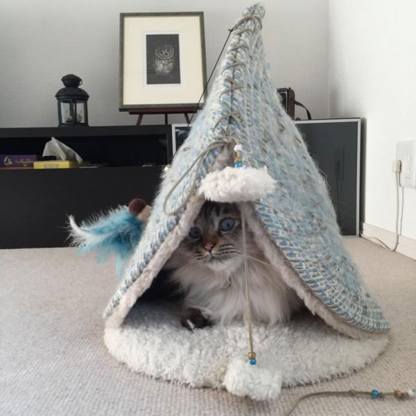 160215powwowmeow01 600x600 - ベッドと爪とぎ一つで二役、円錐様の猫ベッド