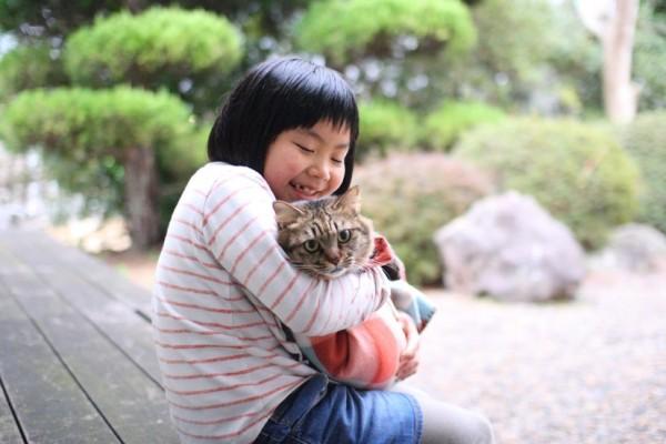 160227Readyfor01 600x400 - 猫を助けて利用者みんながほっこりと。旅館の庭を「猫庭」にするプロジェクト