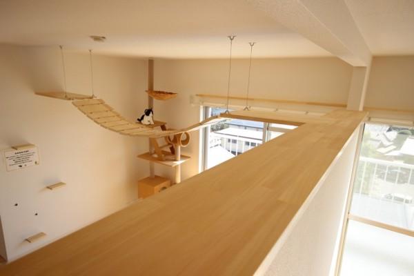 部屋によっては、仕切り壁の上をキャットウォーク化したところも。