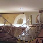 ロンドン初の猫カフェ、開店3年目を迎え春夏冬二升五合の模様