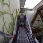 レゴの電車が立ち往生、猫が線路で待ち伏せる