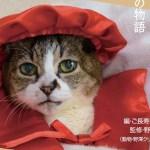 ご長寿猫の秘訣が聞ける、トークイベントが八重洲BC本店で開催