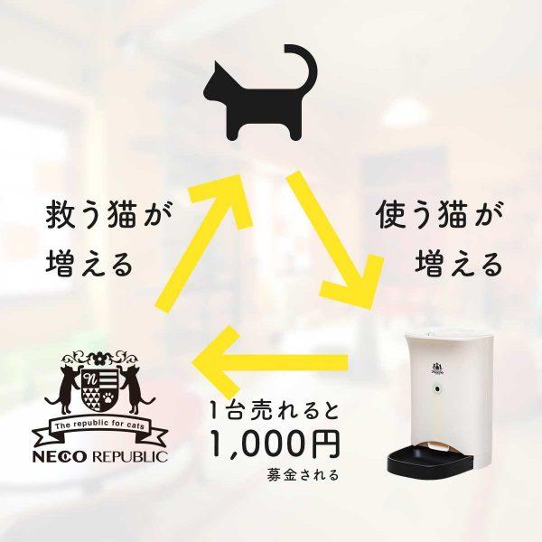 161126nekomeshifeeder04 600x600 - 買うだけでも猫助けになるIoTの「ネコメシフィーダー」、CF支援を募集中