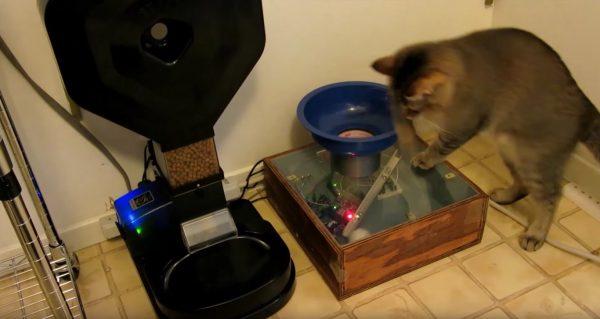 170111cat 600x319 - ボールを入れたらご飯が出てくる、ハイレベルな猫用給餌機DIY