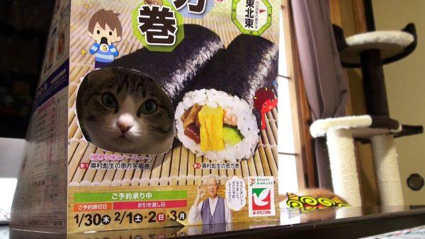 170118catehoumaki 600x338 - 食べるのがもったいない猫恵方巻、斬新な方法で海苔に巻かれる