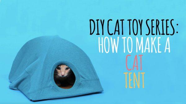 170125diytent 600x338 - ハンガーと古Tシャツと段ボール、合わせて作るDIYの猫テント