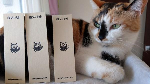 171030Catbookmarker05 600x338 - 保護猫助かる猫ジャーナル特製しおり、ネコリパブリック各店で限定販売