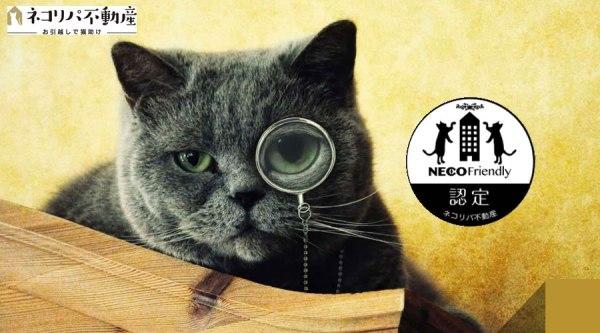 "180425nekorealestate 600x333 - ついに""引越""で猫助けになる時代が到来。「ネコリパ不動産」がスタート"