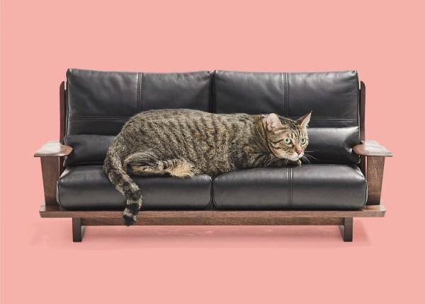 180924nekokagu05 1920 600x430 - 猫用サイズの職人MADE、あのネコ家具がふるさと納税の返礼品に