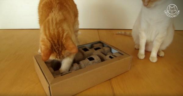 使い終わったパルプモールドを再活用、猫のオモチャにDIY