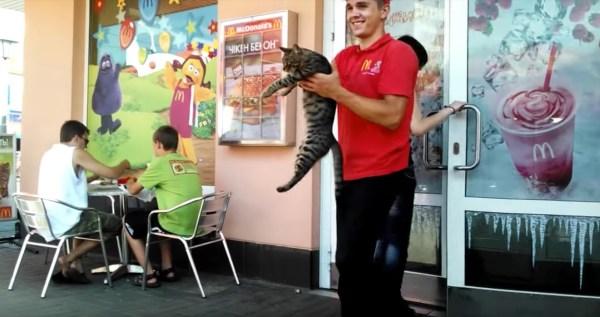 190704cat 600x317 - マックの前で開放求めて横たわる猫、店員笑顔の実力行使