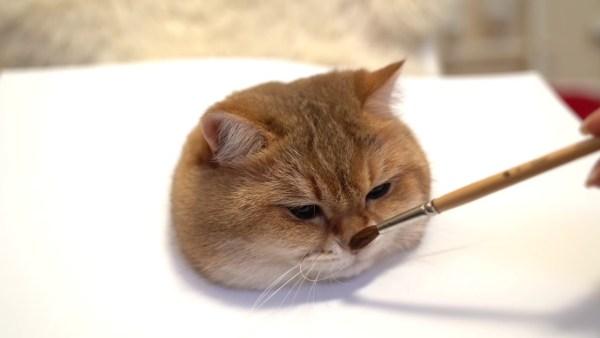 190706cat 600x338 - これならあなたも猫画伯に、立体感あふれまくる猫絵の描き方
