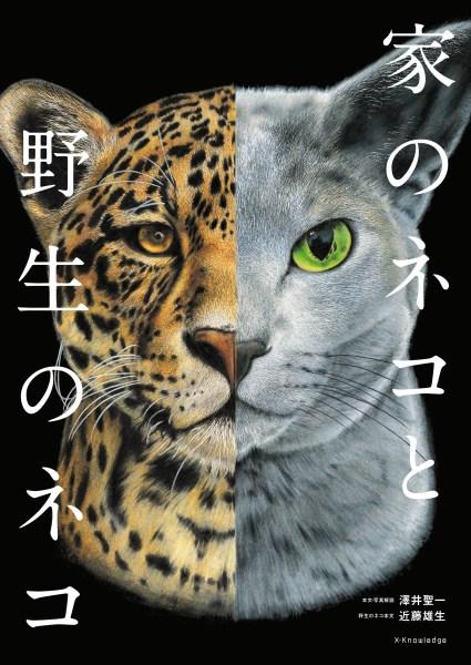 190808cat01 1920 425x600 - ページめくれば猫の知識の泉湧く、アカデミックな猫分補給にこの一冊