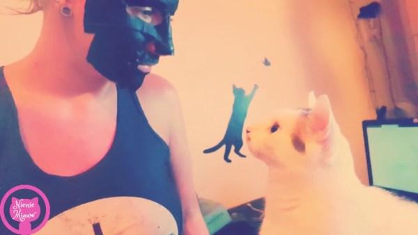 飼い主の黒いマスクに白猫混乱、顔を見合わせ目を丸く