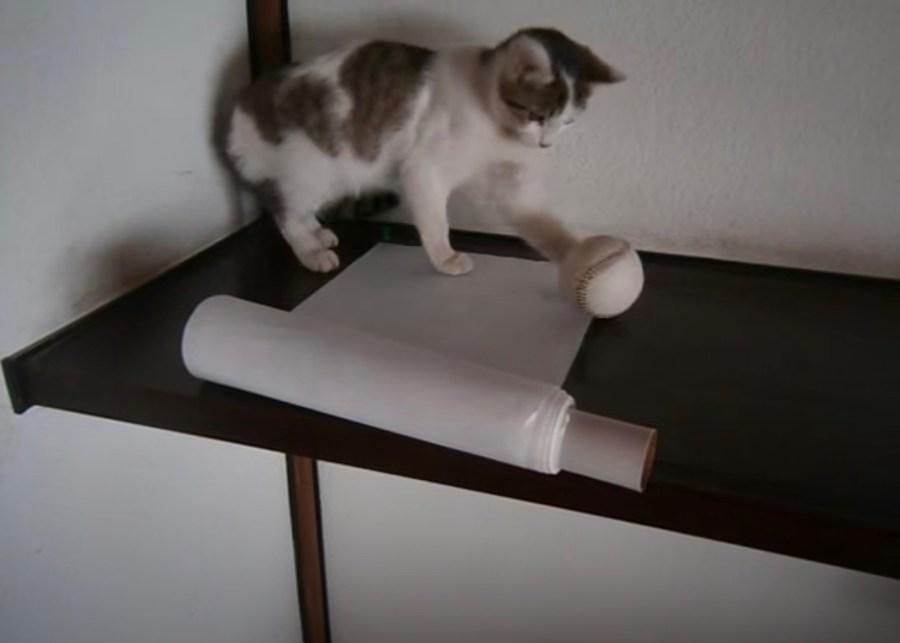 来年の年の初めのお年賀は、猫の手借りたあけおめ装置で