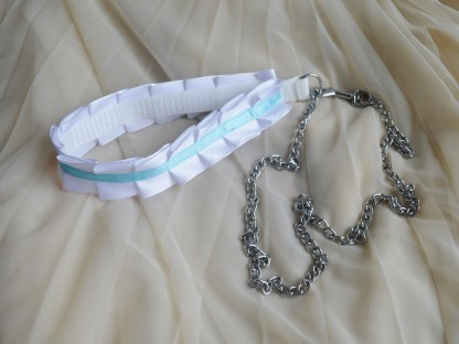 White and blue leash