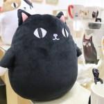 もっちり黒猫