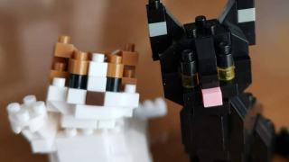 ナノブロックの黒猫とスコティッシュフォールドの組み立てレビュー。組み立て時間、難易度なども。