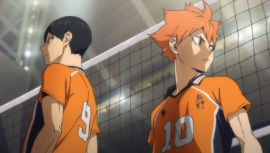 haikyu to the top