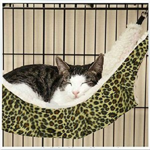 【QOL向上大作戦】愛猫に「ハンモック(ニャンモック)」で「快適さ」をプレゼントしよう♪