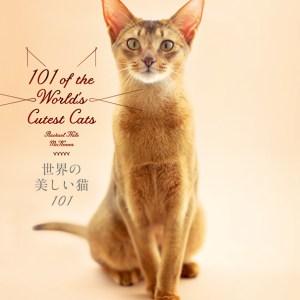 大切な人へのクリスマスプレゼントに。『世界の美しい猫101』