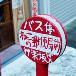 【何のお店?】『猫の郵便局というなまえのお店』に行ってみたい♪