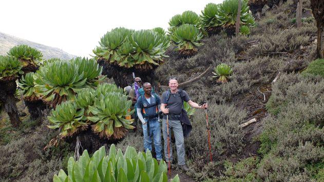 Benny, Michael und ich im Liki Valley