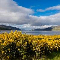 Consigli sull'organizzazione di un viaggio in Scozia