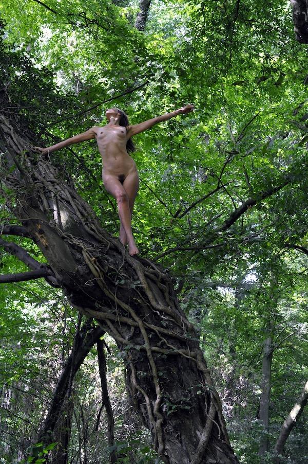 naakte vrouw in boom