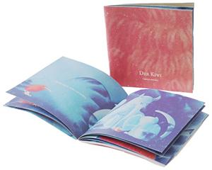 Cover vom Bilderbuch Der Kiwi