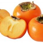 柿タンニンとは