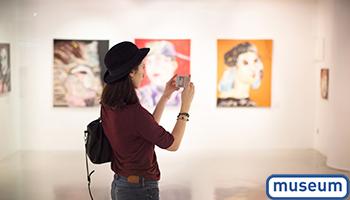 Nell_formation_museum_L'usage des réseaux sociaux niveau 2