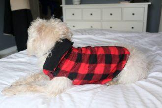 DIY Puppy Jacket